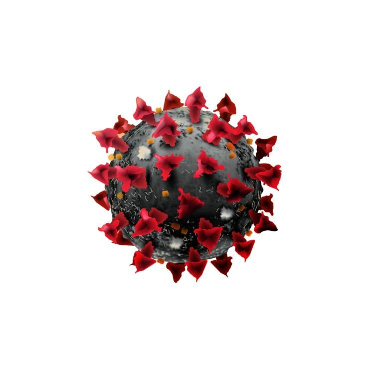 Koronavirus v době marketing